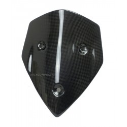 Carbon Windshield Multi...